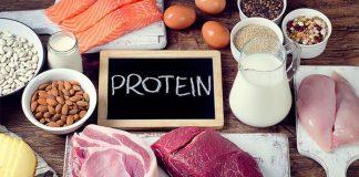 công dụng protein